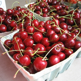 Cherries by Laura