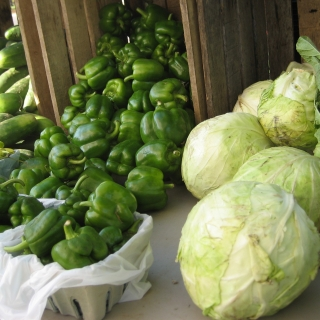 Vegetables-cabbage_pepper